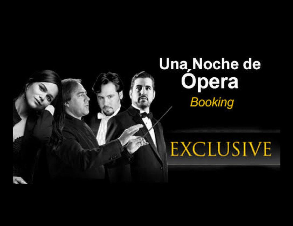 Una noche de ópera