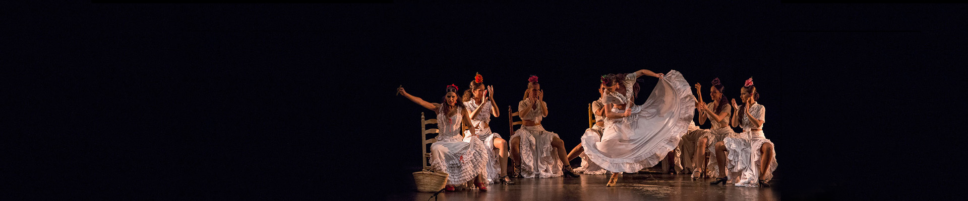 flamenco espectáculo