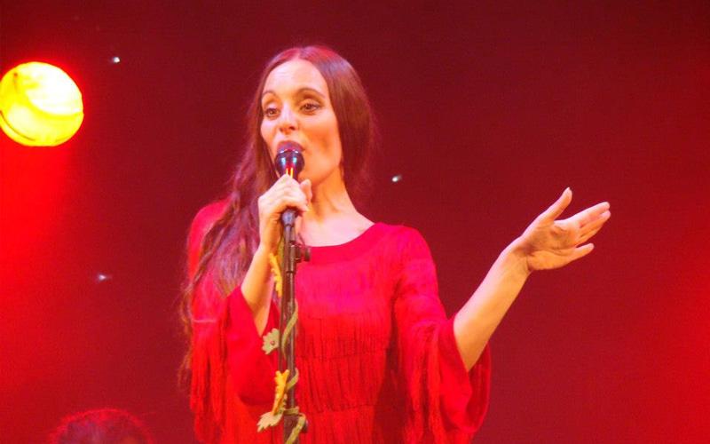 flamenco Cantante