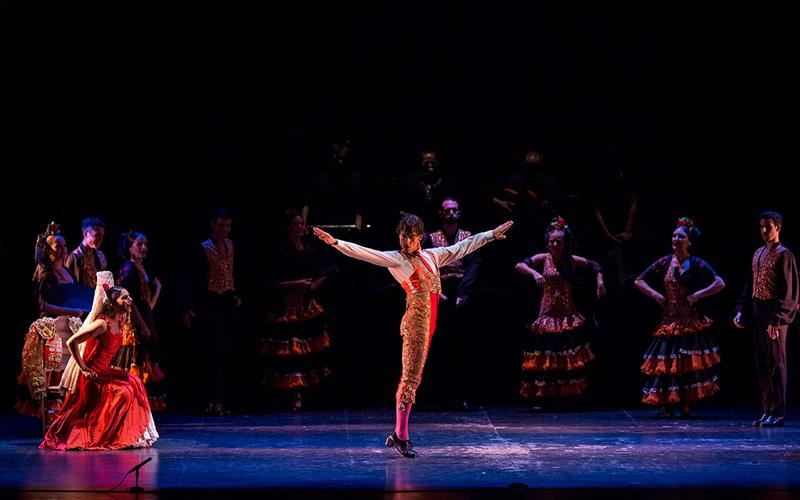 Espectáculo flamenco booking