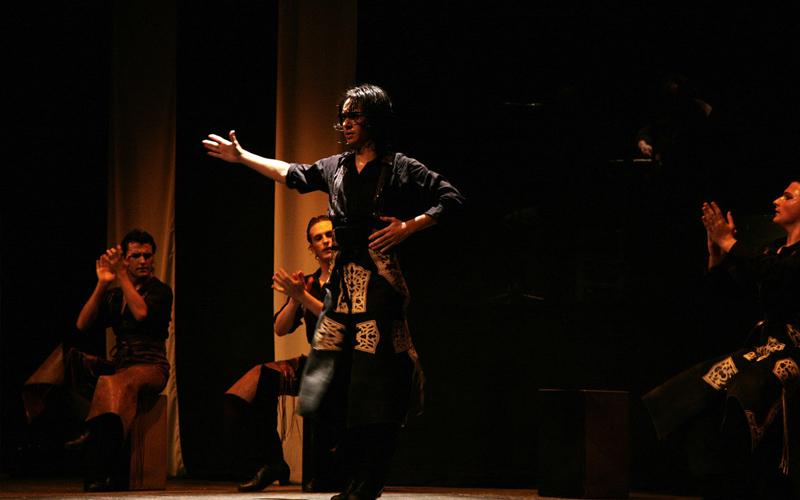 Palmeros espectáculo flamenco