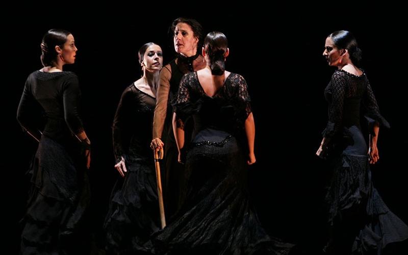 bailaores flamenco show