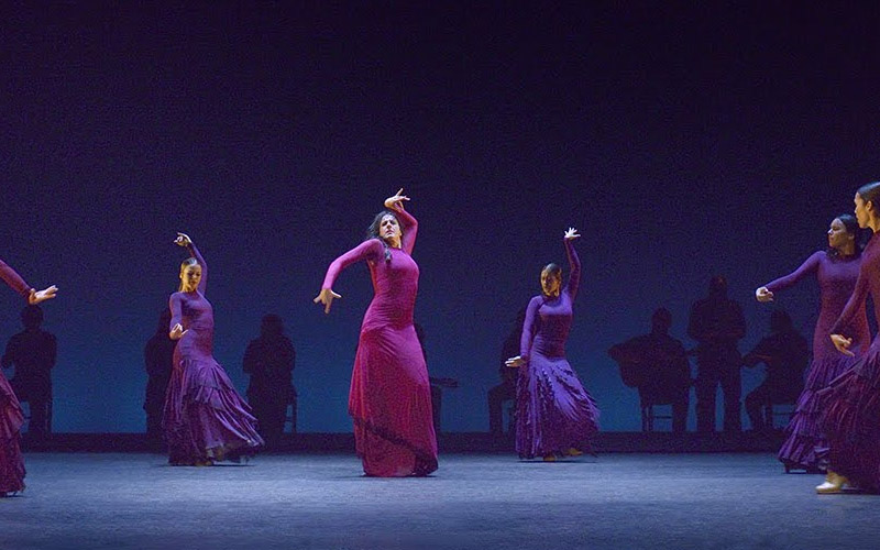 bailaores flamenco maria pagués
