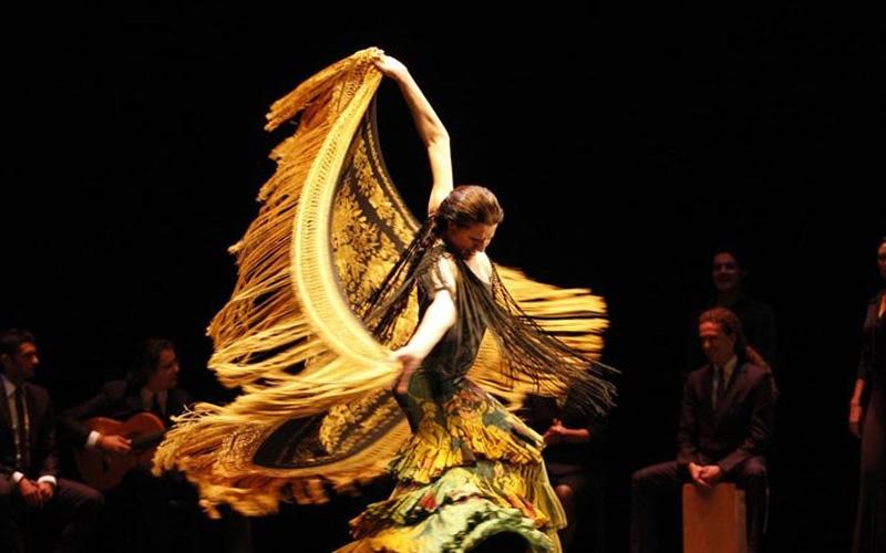 bailaores flamenco