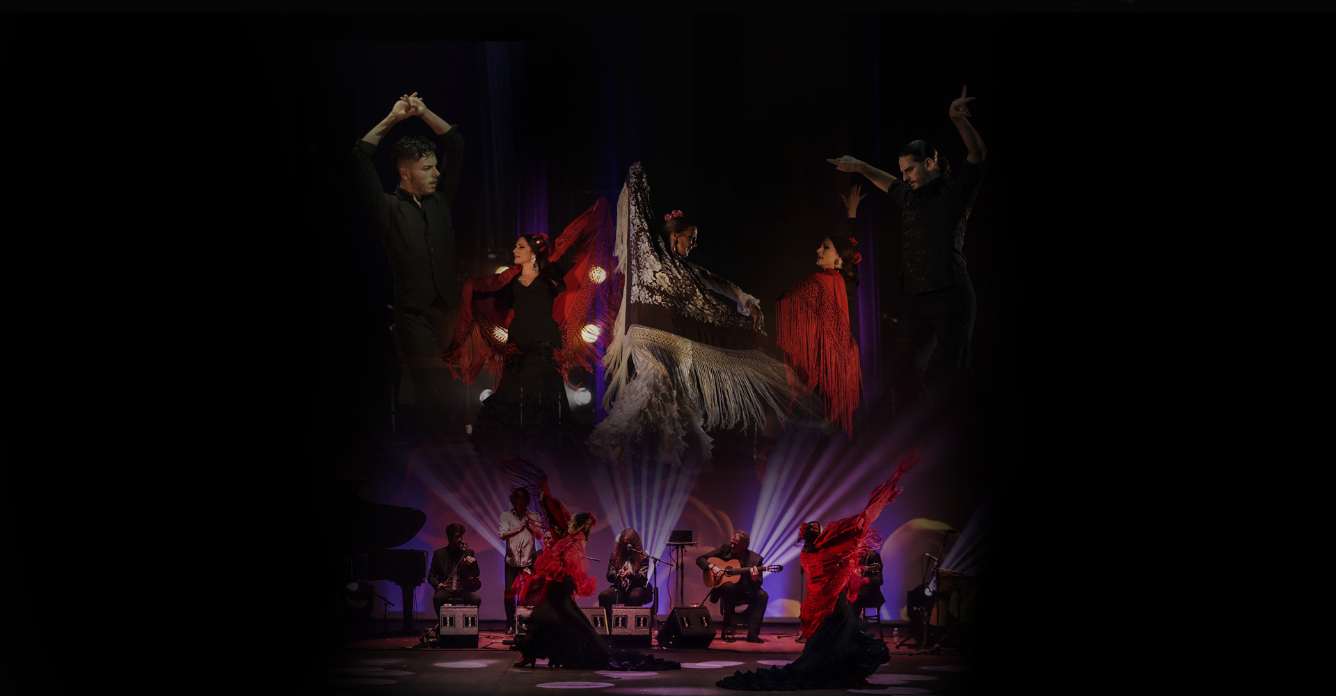 Flamenco Passion Show